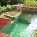 Adding a Natural Pool to Your Home
